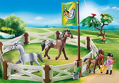 6931 Enclos avec chevaux