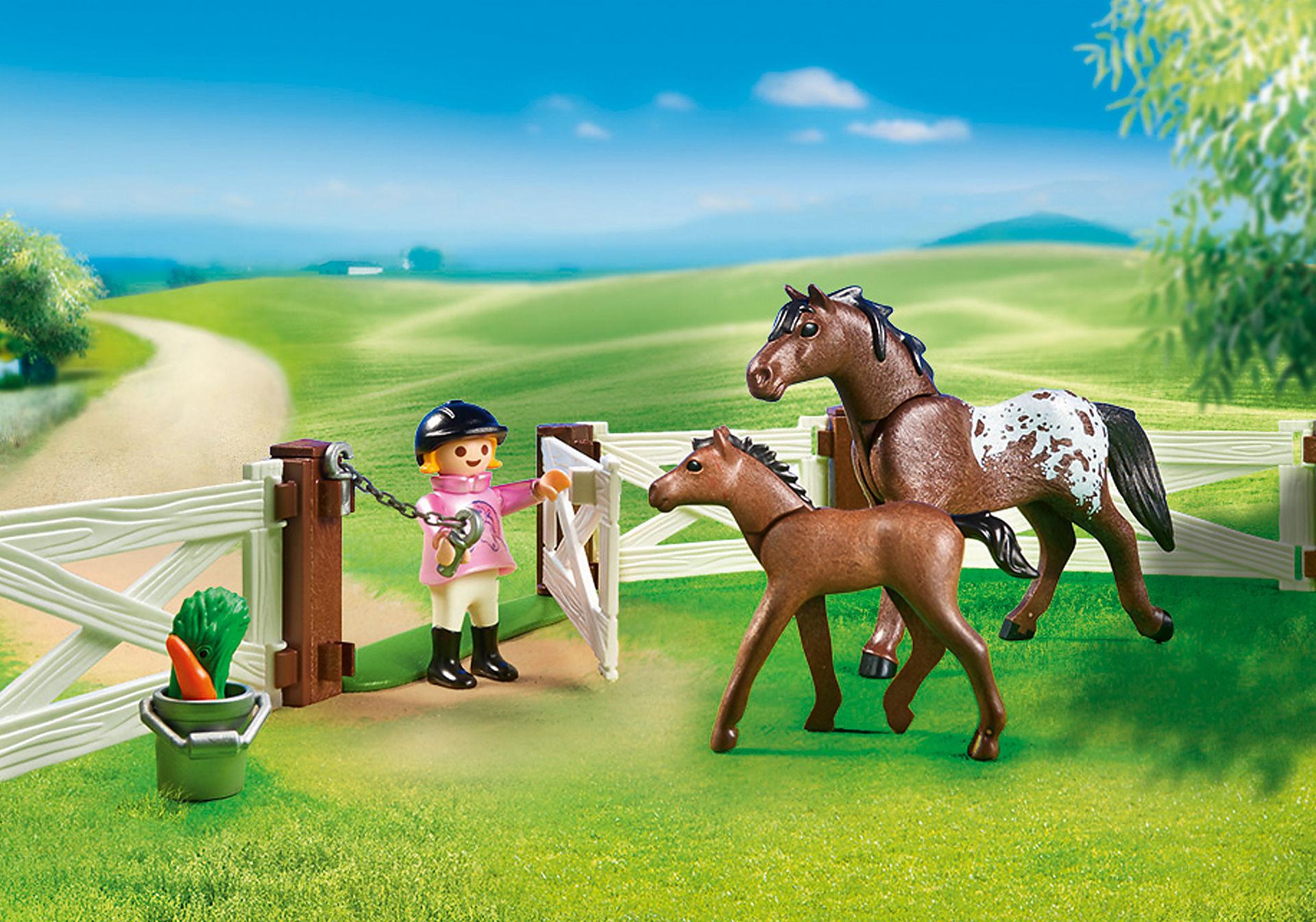 6931 Enclos avec chevaux  zoom image5