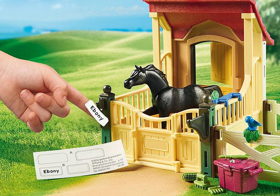 6934 Box avec cavalière et pur-sang Arabe  detail image 5