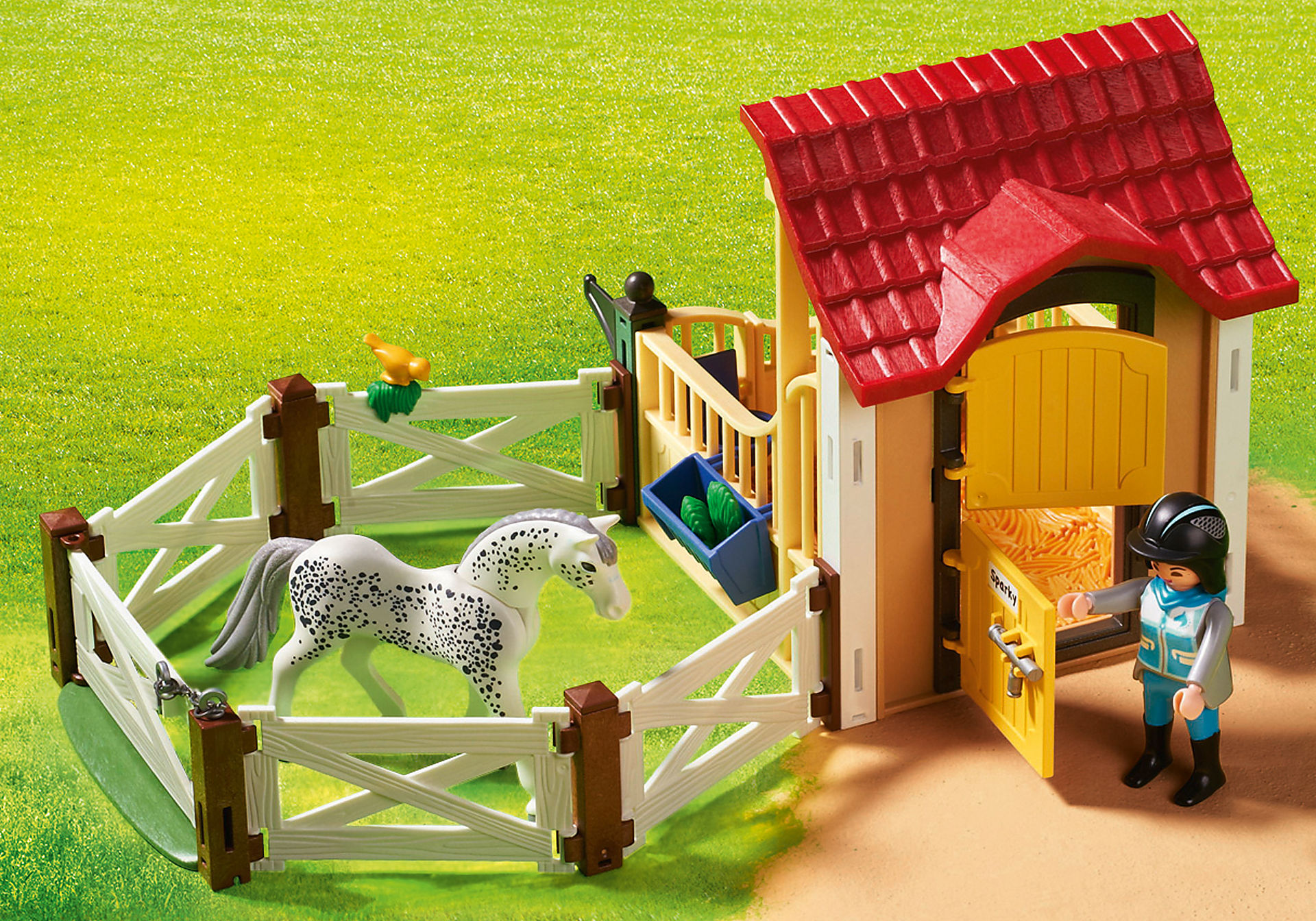6935 Box avec cavalière et cheval Appaloosa zoom image7