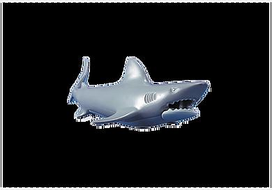 7006 Shark