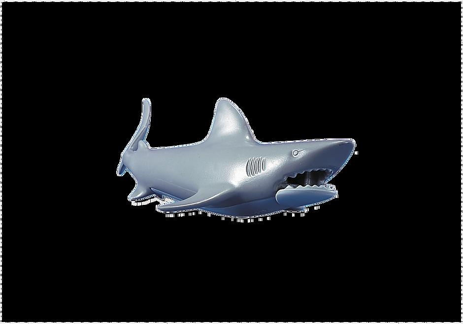 7006 Un requin detail image 1
