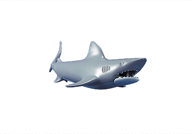 7006_product_detail/Un requin