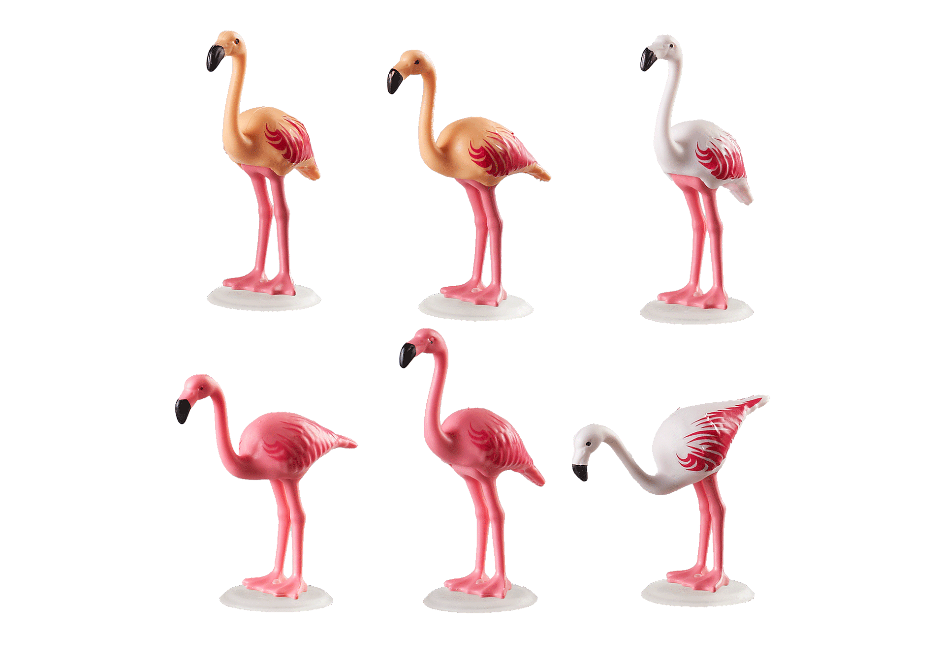 70351 Flock of Flamingos zoom image3