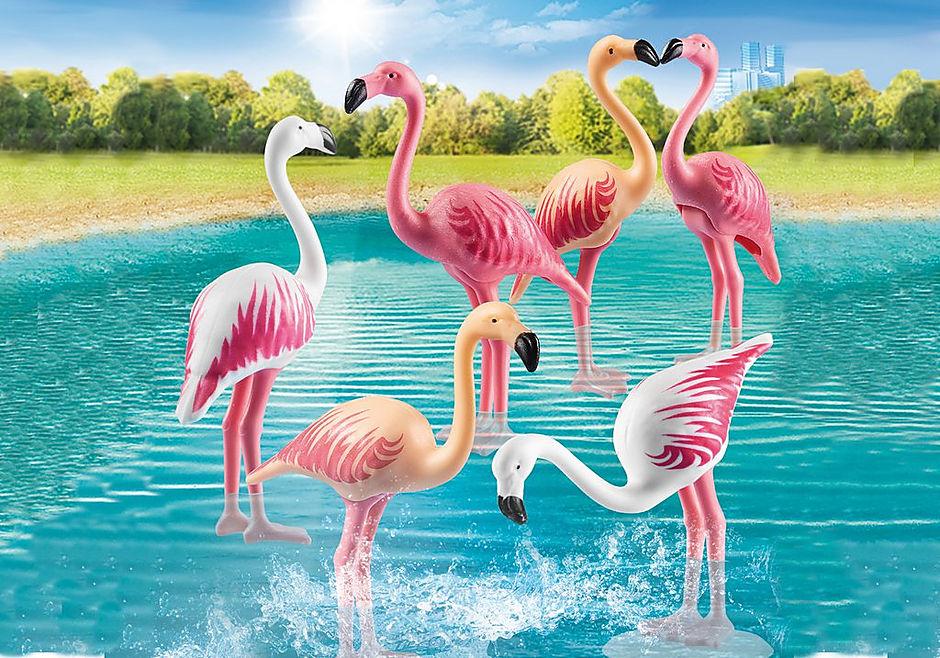 70351 Flamingoschwarm detail image 1