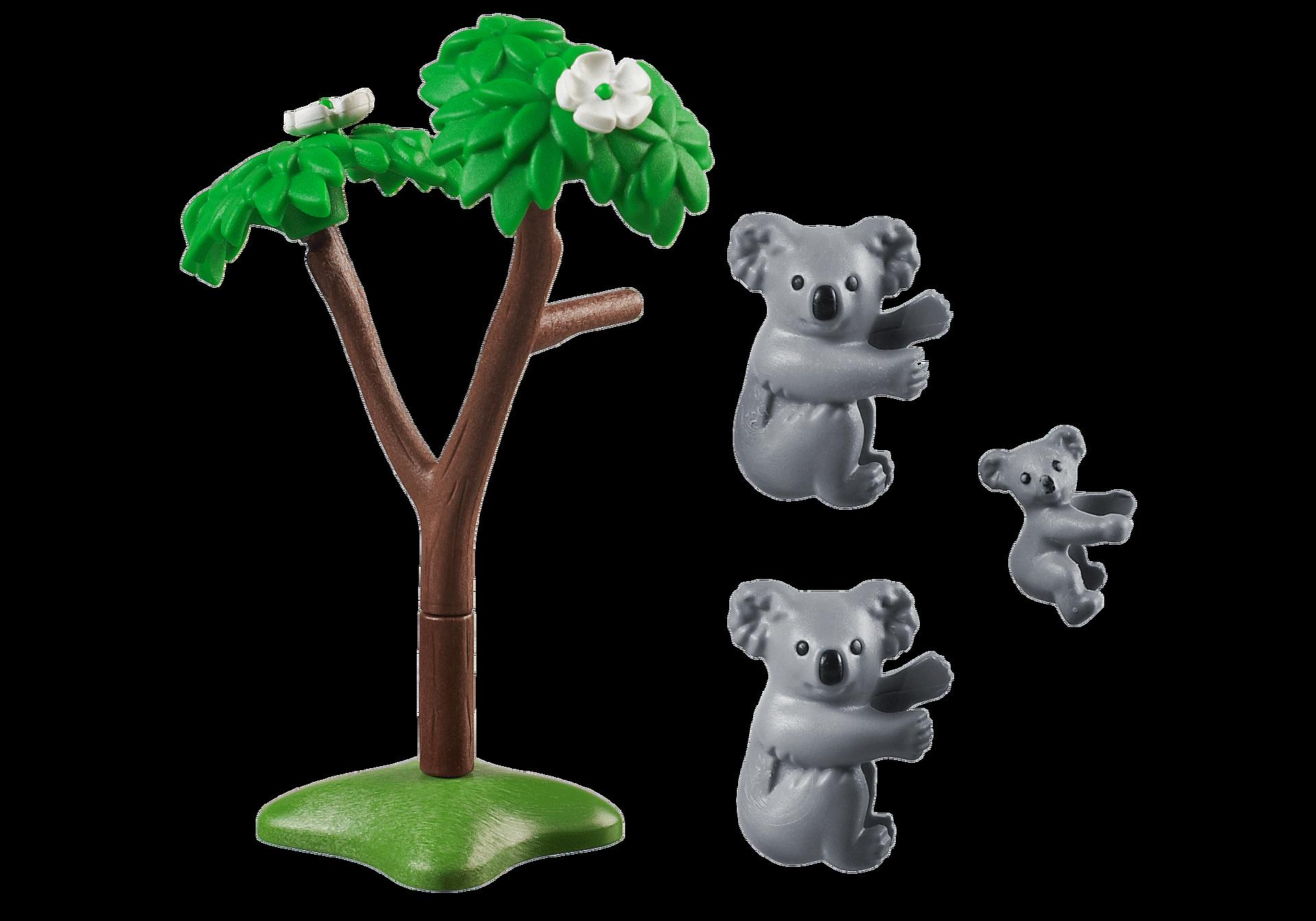 70352 Couple de koalas avec bébé  zoom image3