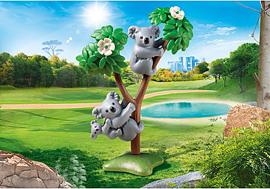 70352 2 Koala's met baby