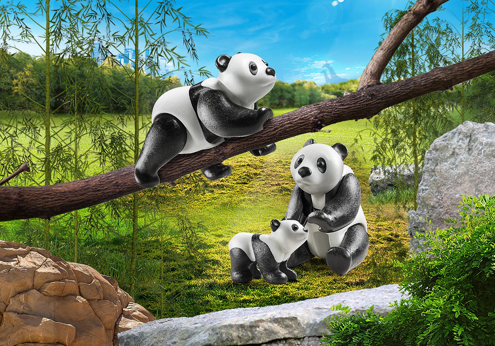 70353 Couple de pandas avec bébé zoom image1