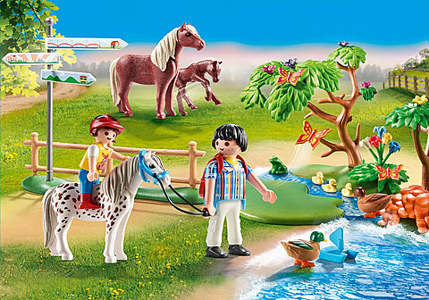 70512 Passeggiata con i pony