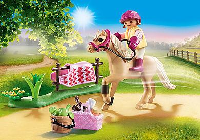 70521 Collectie pony 'Duitse rijpony'