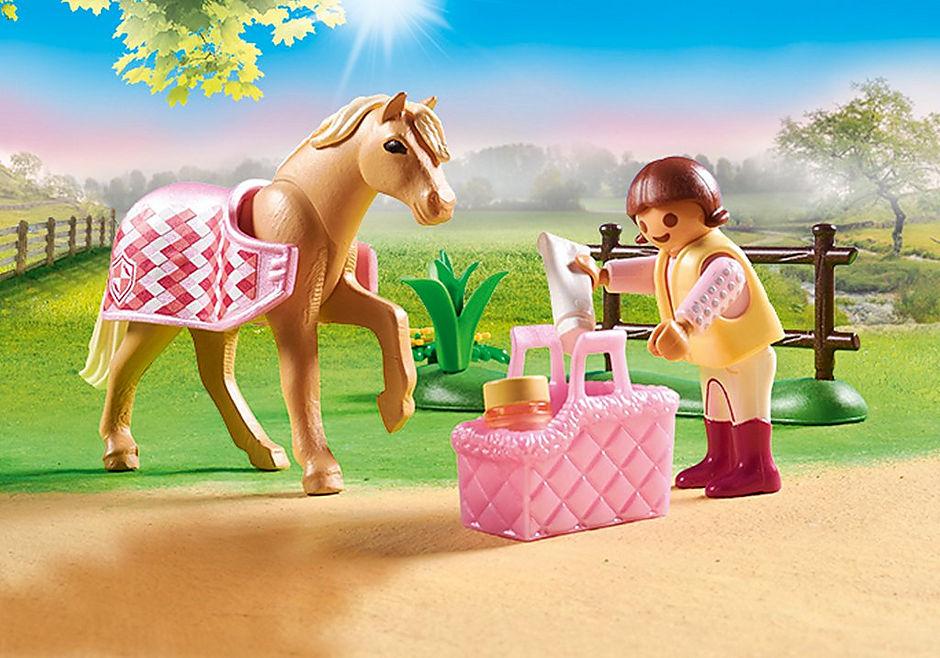 70521 Collectie pony 'Duitse rijpony' detail image 4
