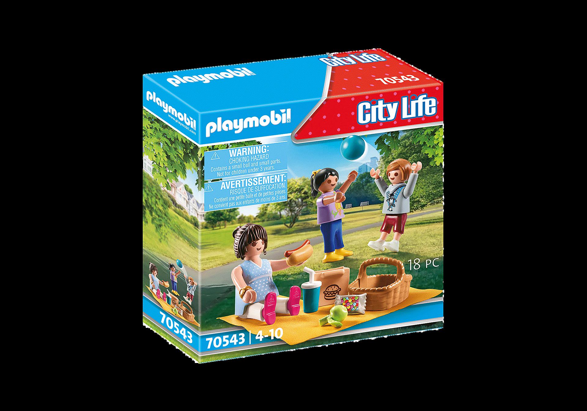 70543 Picknick in het park zoom image2