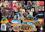 70576 thumbnail 2