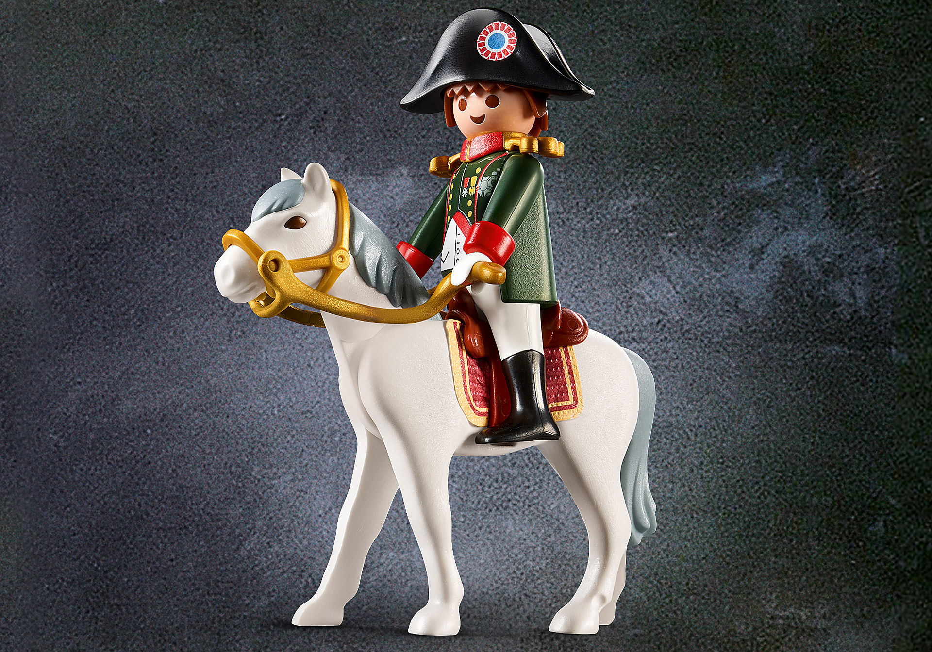 70679 Napoleon zoom image1