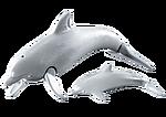 7363 Delfín con Bebé
