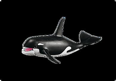 7654 Kardszárnyú delfin