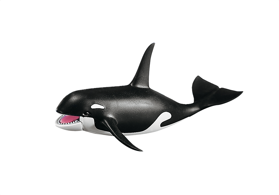 7654 killer whale detail image 1
