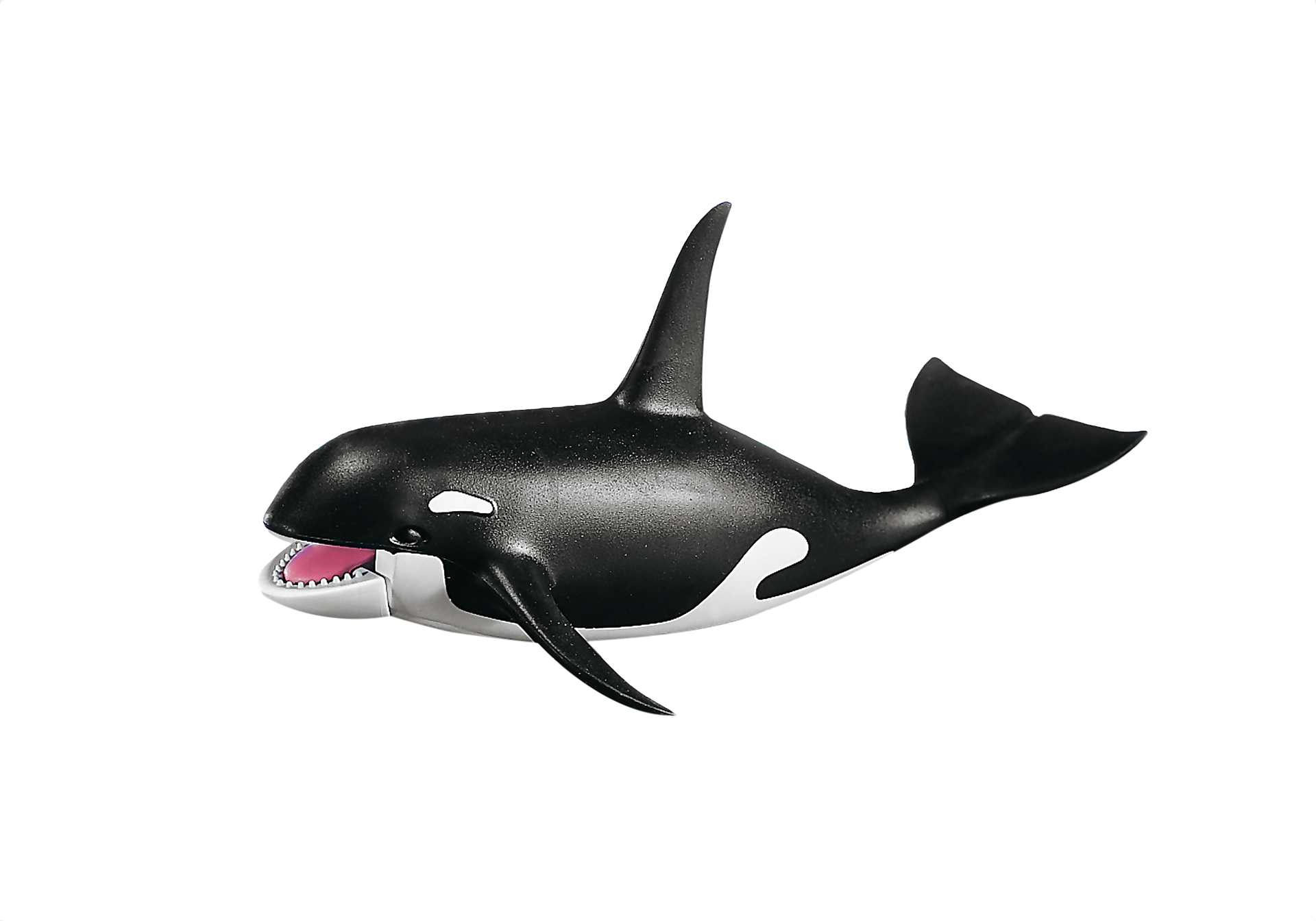 7654 killer whale zoom image1