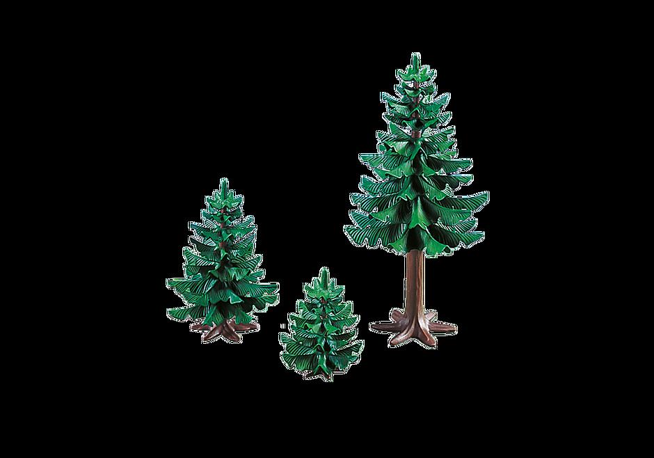 7725 Gruppe af fyrretræer detail image 1