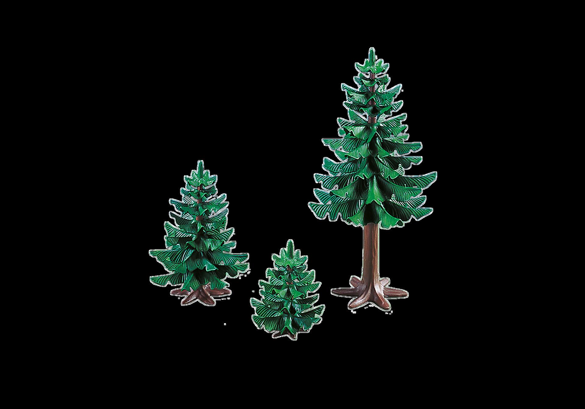 7725 Gruppe af fyrretræer zoom image1