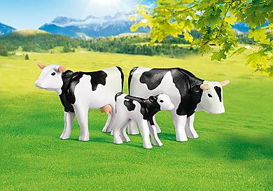 7892 2 Zwarte koeien met kalfje