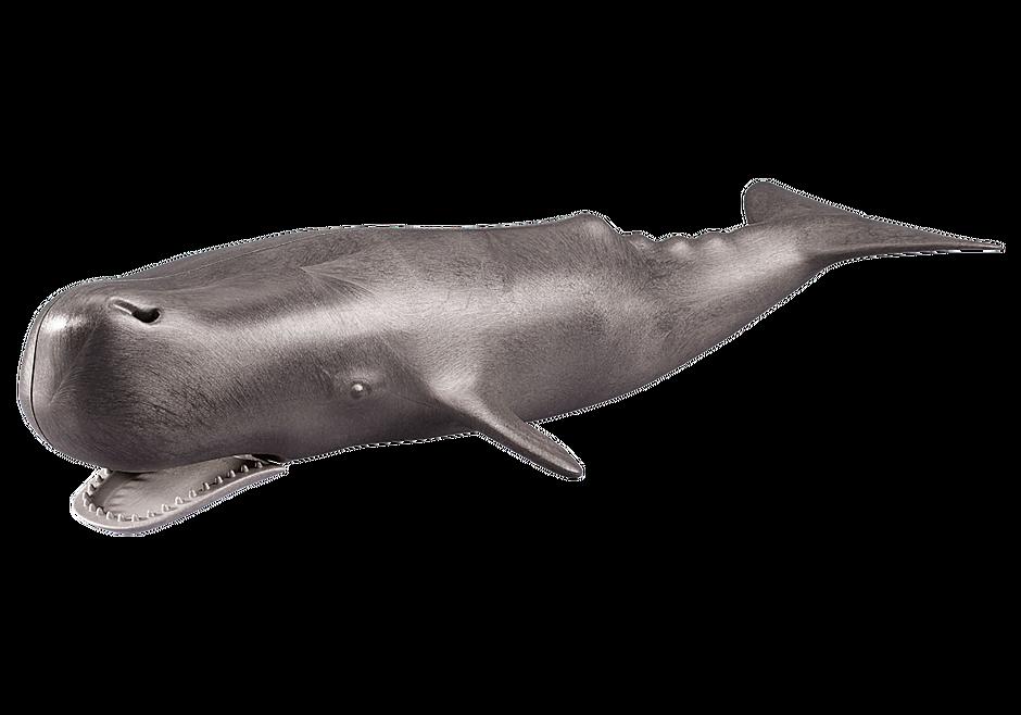 7998 Φάλαινα φυσητήρας detail image 1