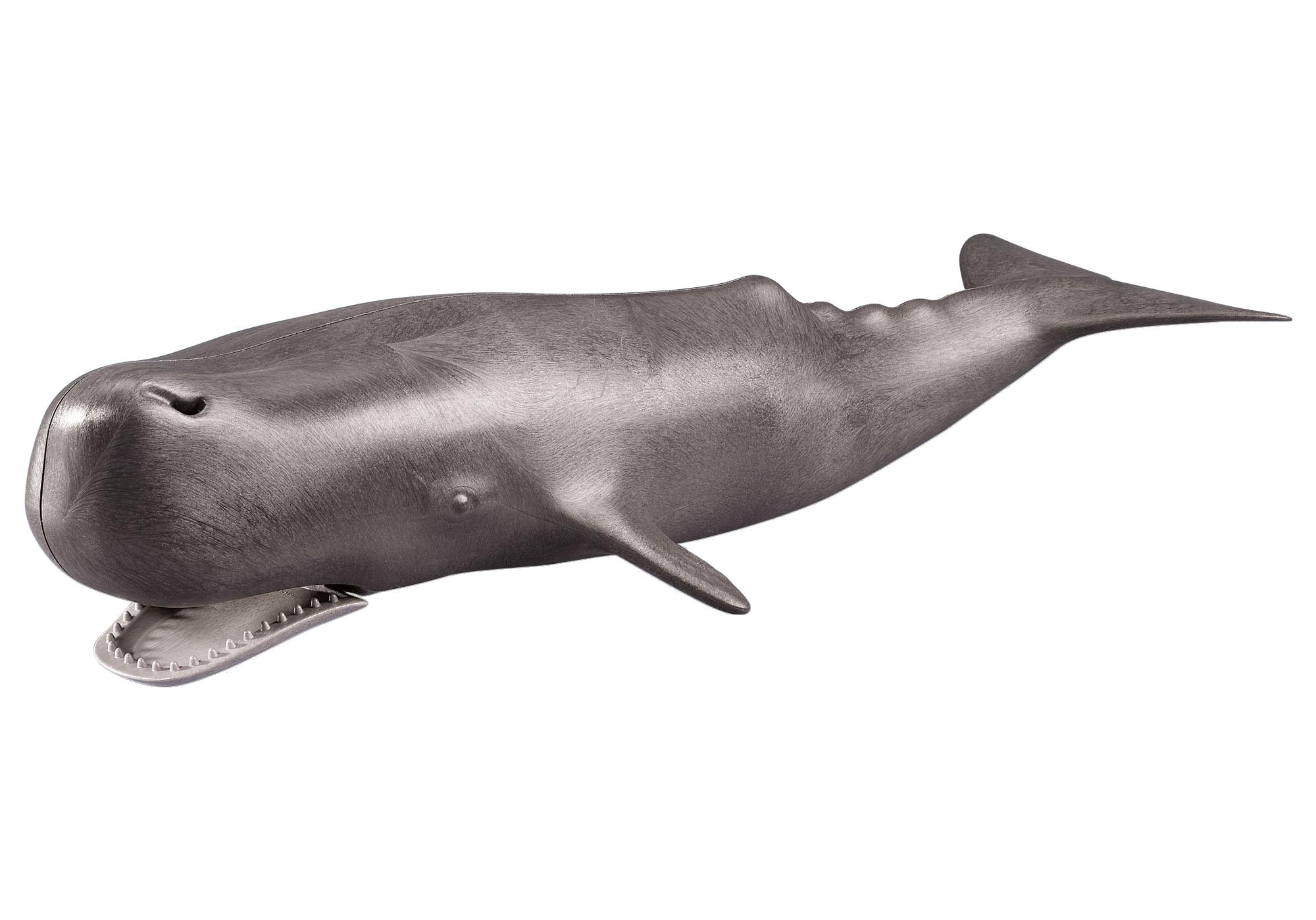 http://media.playmobil.com/i/playmobil/7998_product_detail/Whale