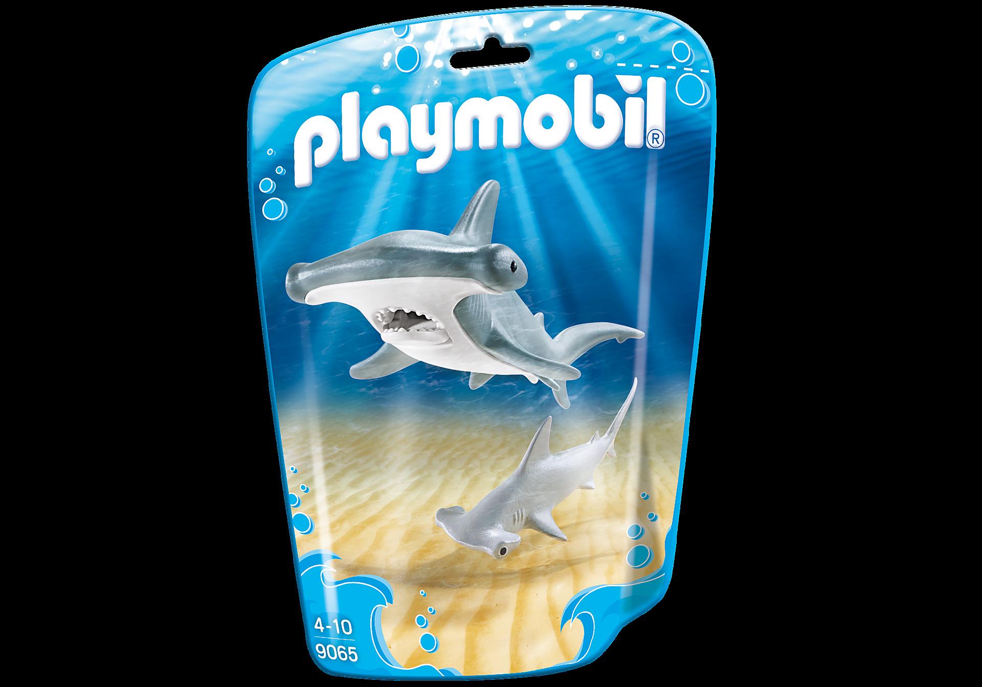 9065 Requin-marteau et son petit zoom image3