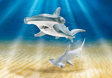 9065 Σφυροκέφαλος καρχαρίας με το μικρό του