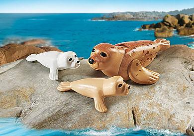 9069 Zeehond met pups