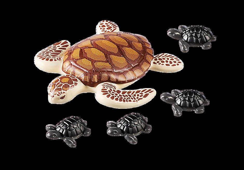 9071 Havssköldpadda med ungar detail image 4