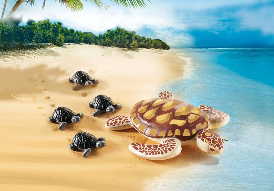 Sea Turtle with Babies