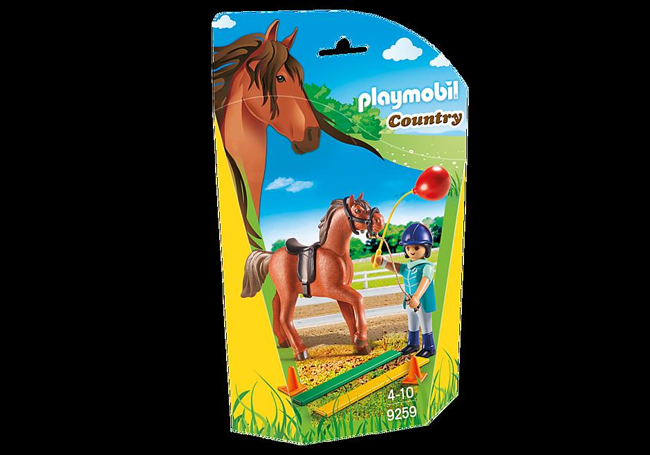 9259 Fisioterapista dei cavalli detail image 3