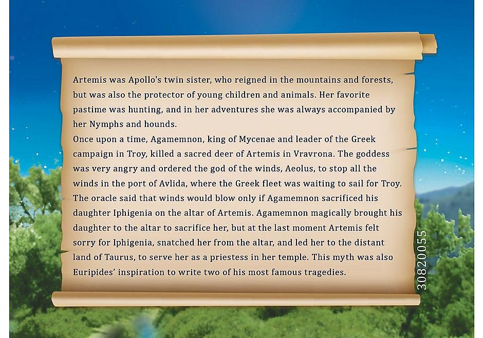 9525 Artemis detail image 5