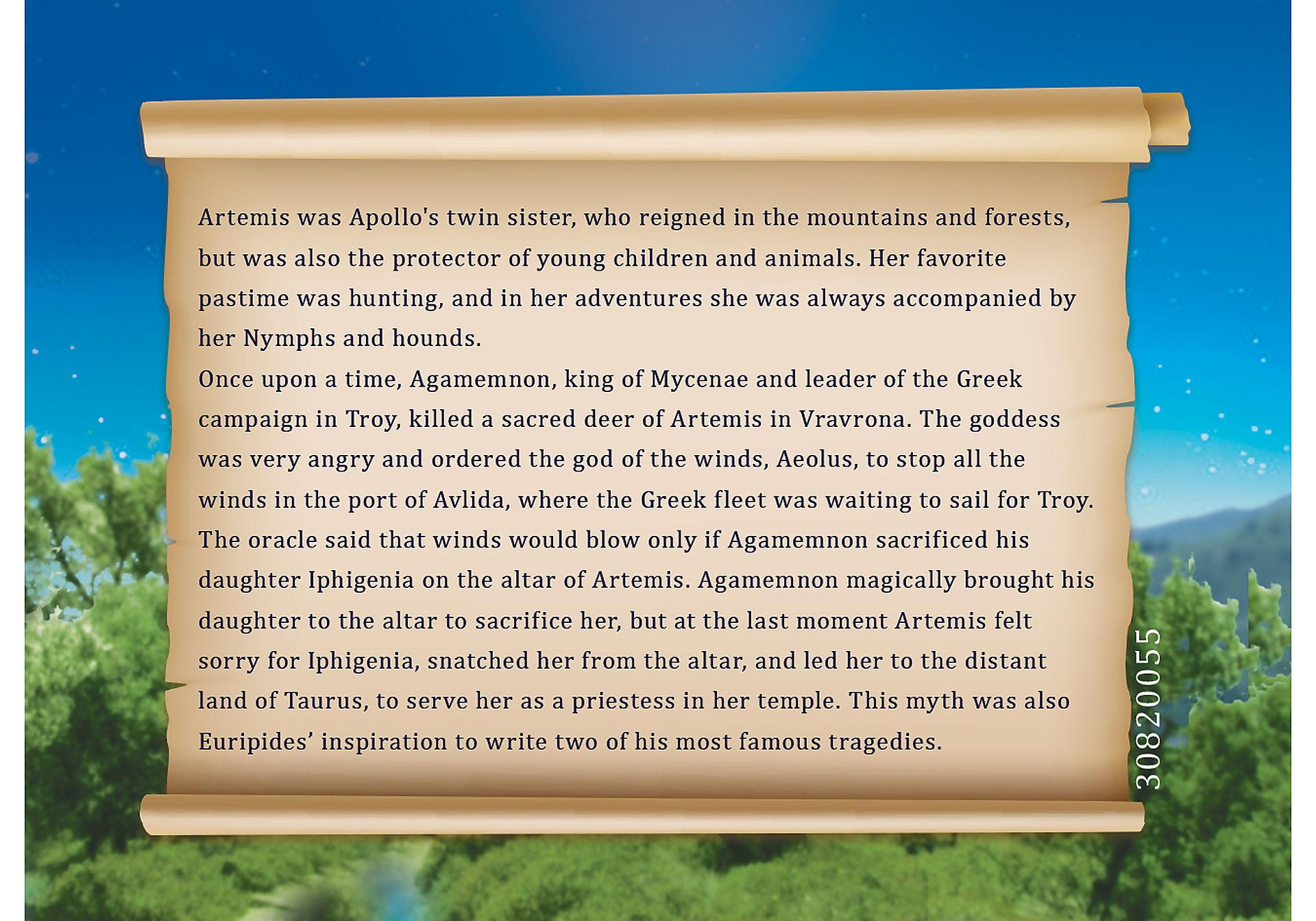 9525 Artemis zoom image5