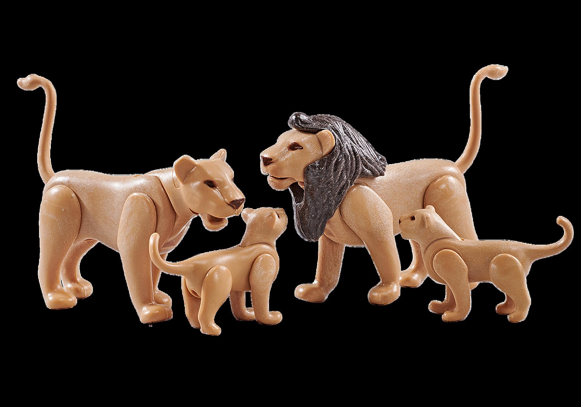 9834 Famille de lions  zoom image1