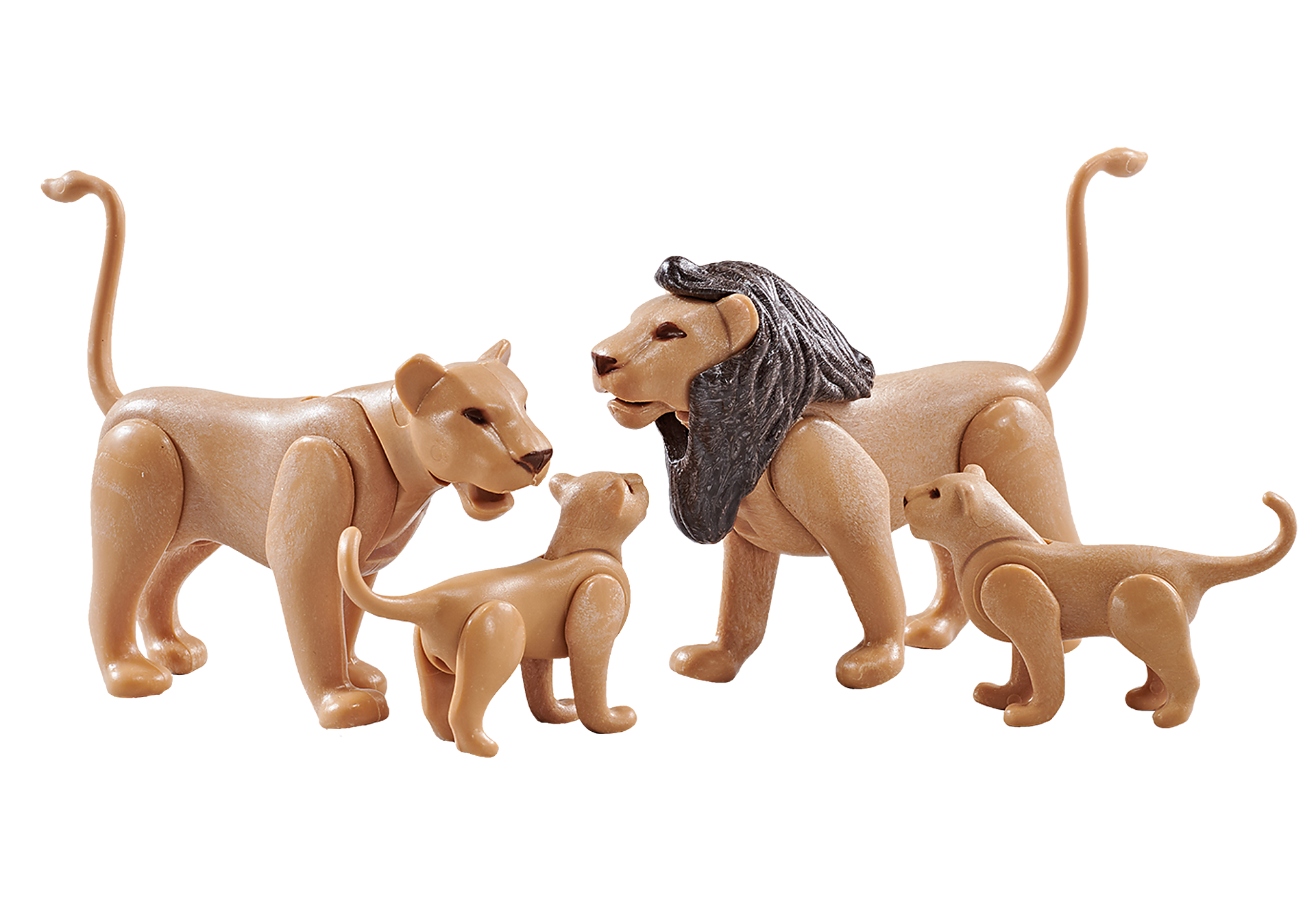 9834 Lion Family zoom image1