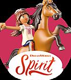 Category Spirit