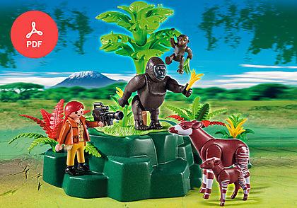 5273 Gorillas and Okapis with Film Maker