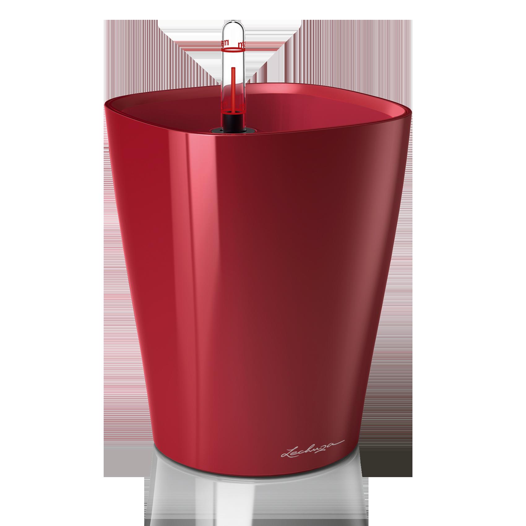 DELTINI scarlet red high-gloss