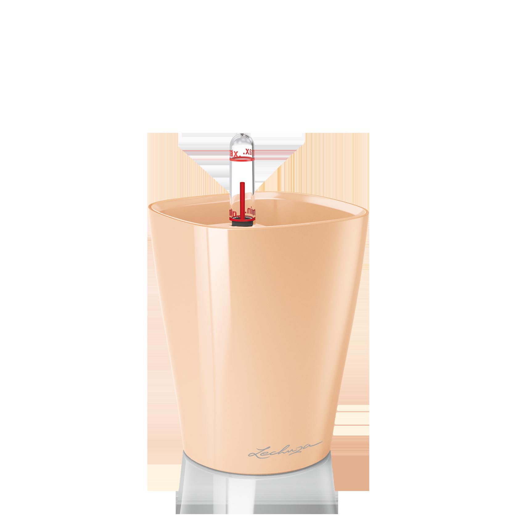 MINI-DELTINI apricot high-gloss