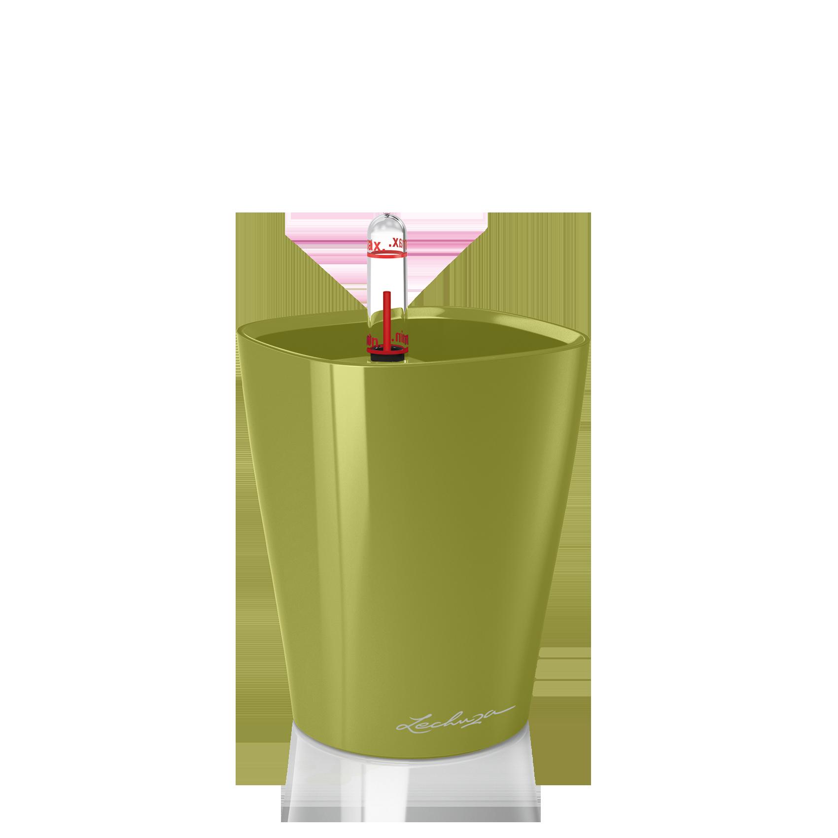 MINI-DELTINI olive green high-gloss