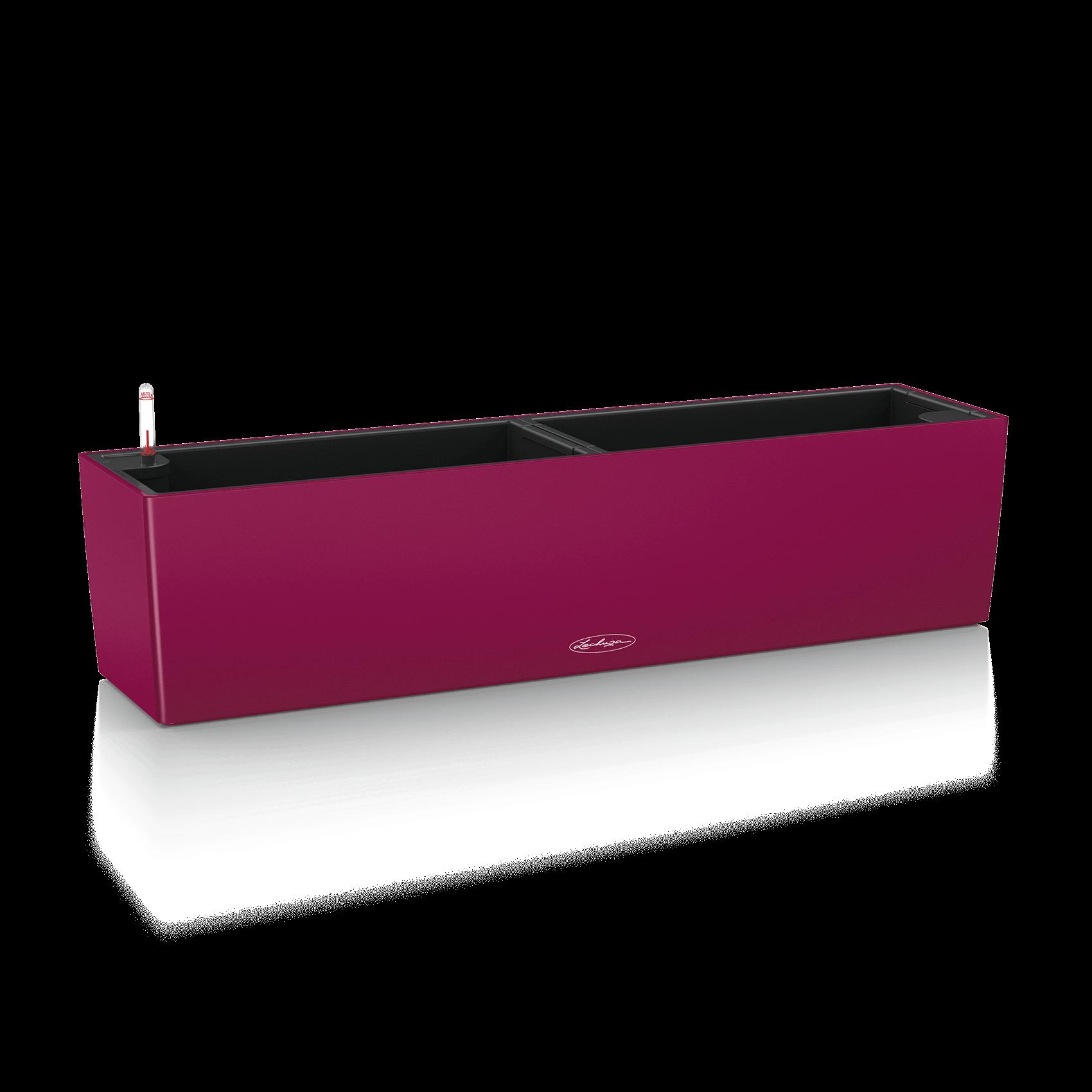 BALCONERA Color 80 purple garnet