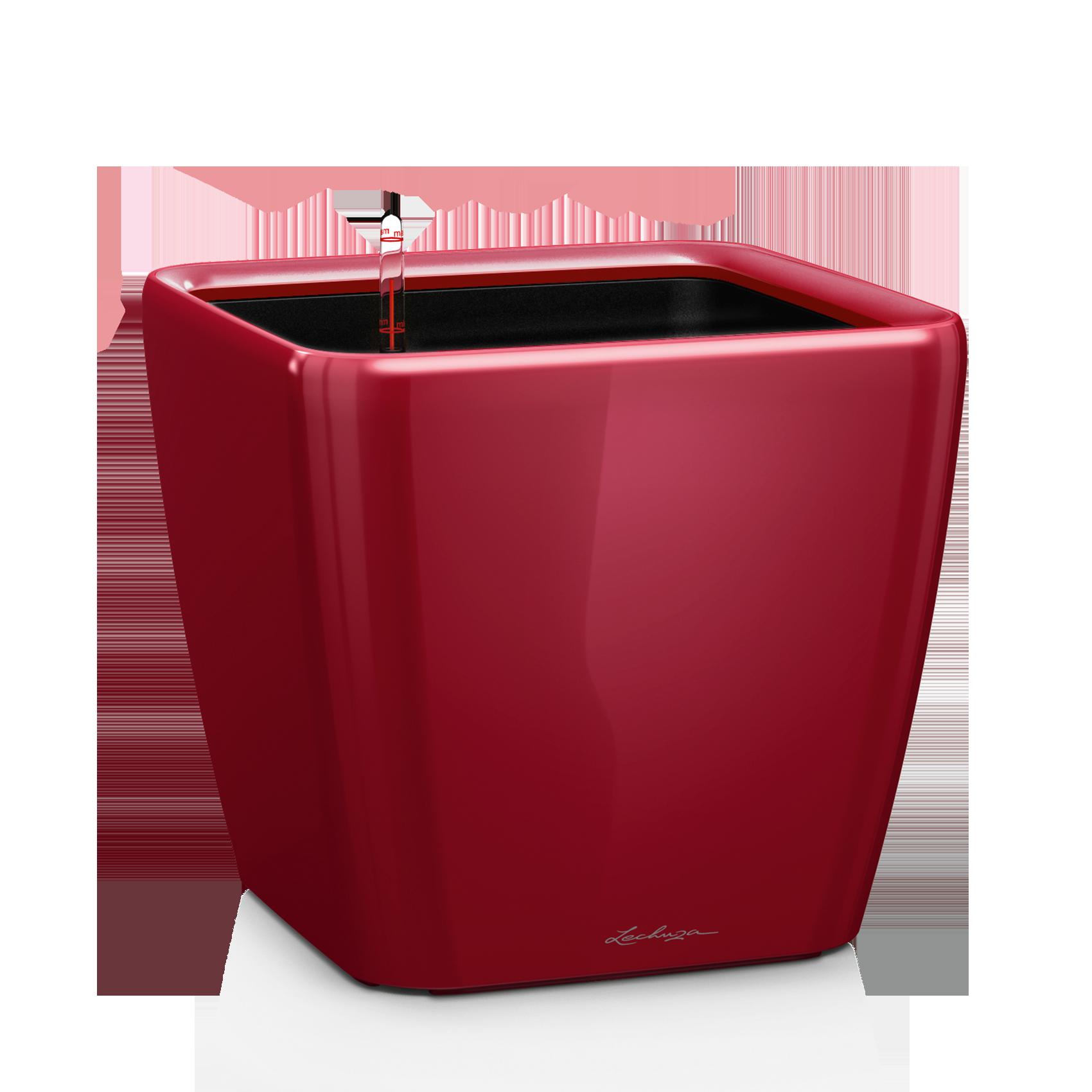 QUADRO LS 28 Ярко-красный блестящий