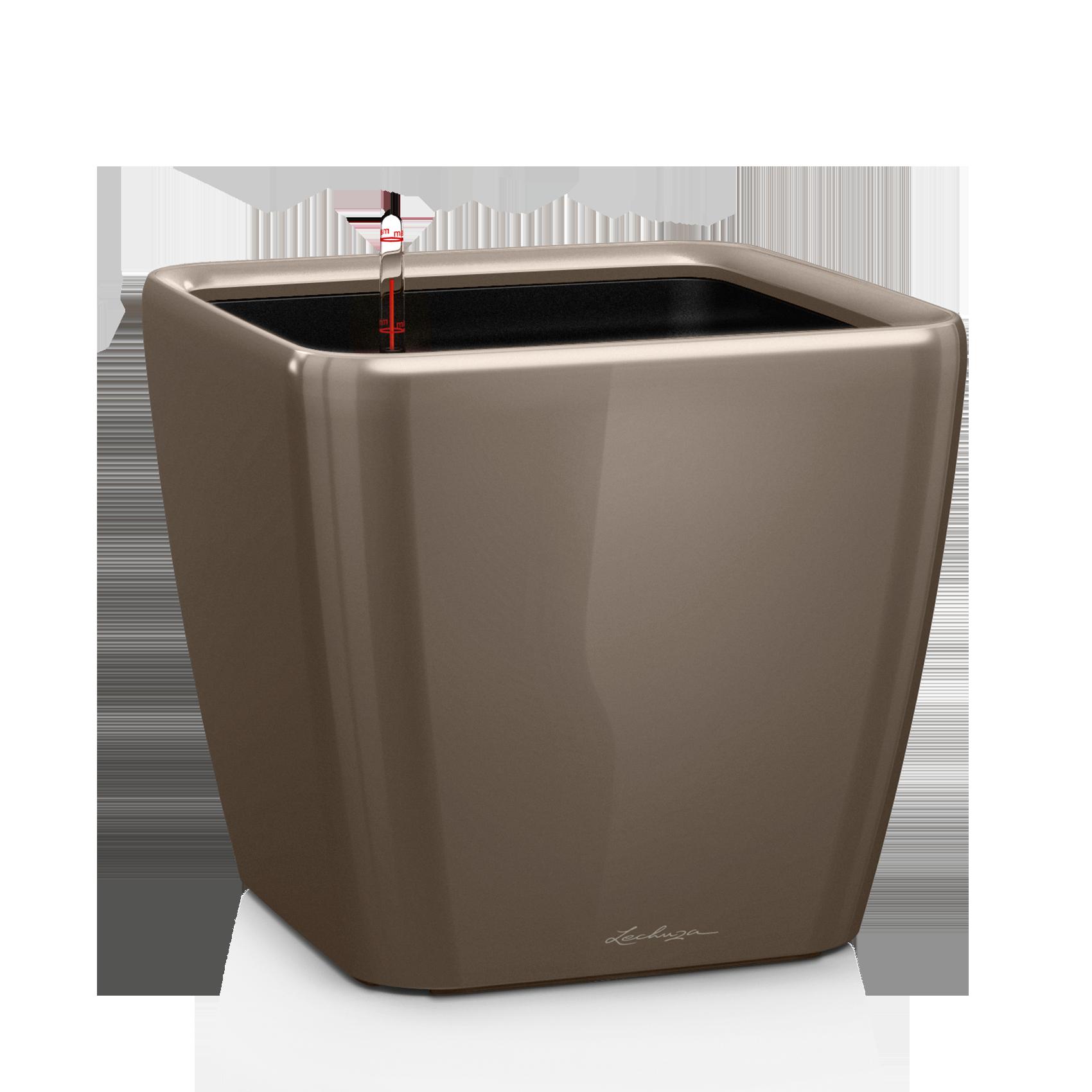 QUADRO LS 43 серо-коричневый блестящий