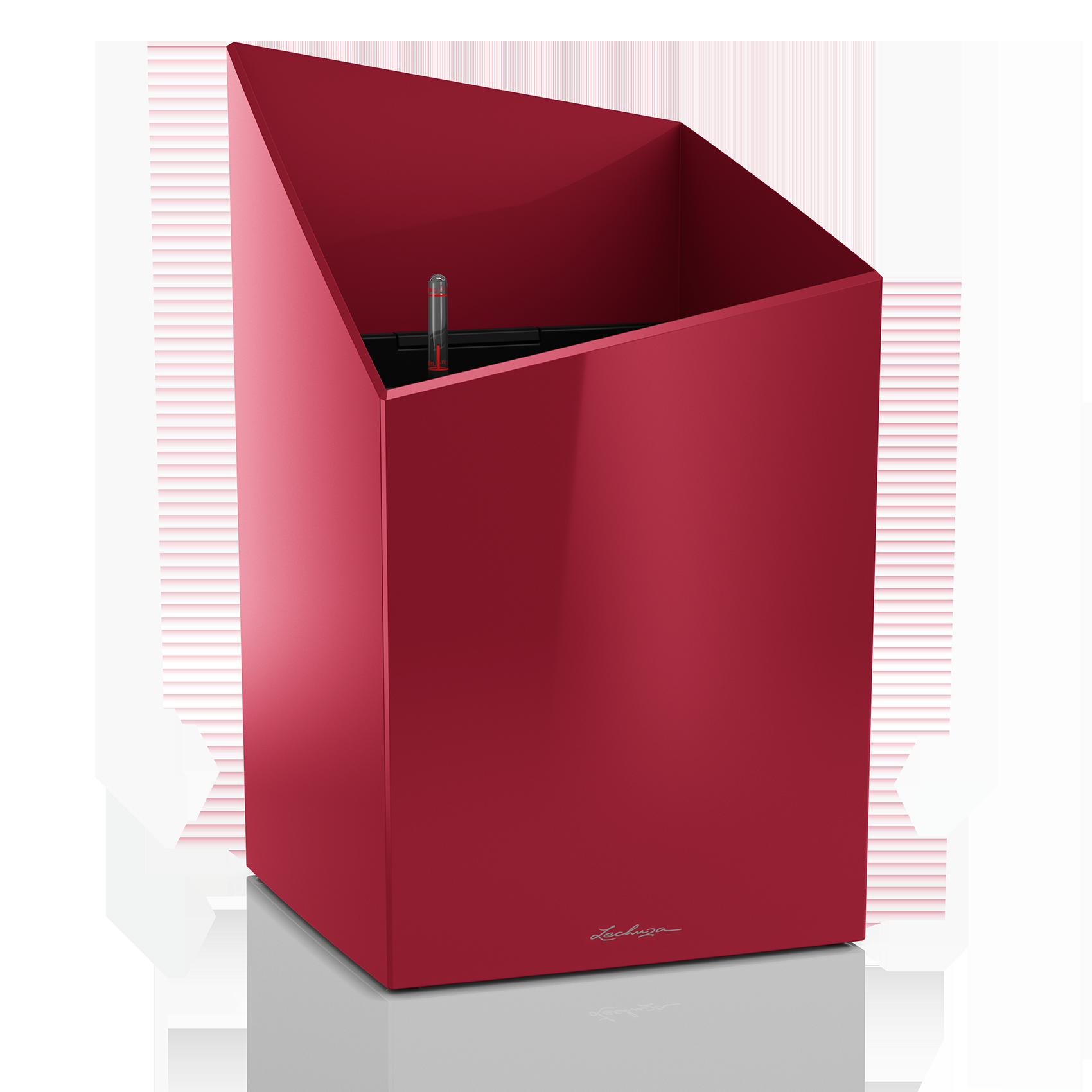 CURSIVO 30 rouge scarlet brillant