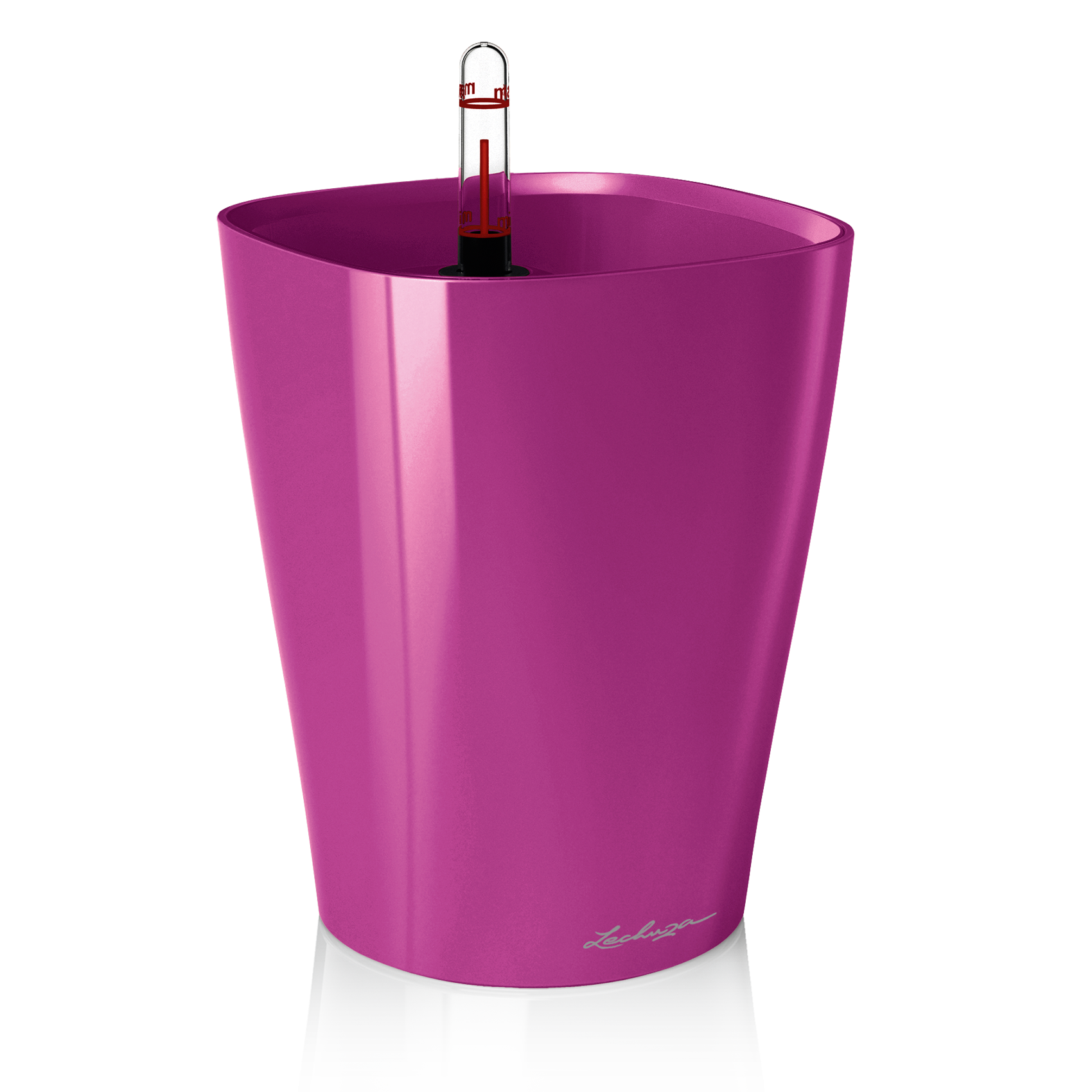 DELTINI fuchsia high-gloss
