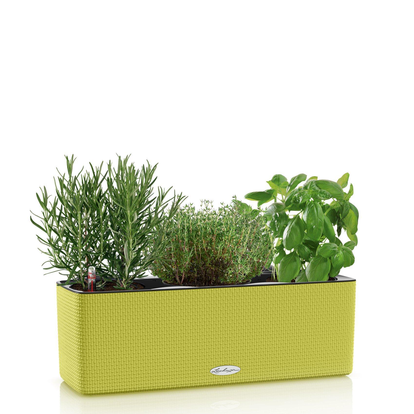 balconissima-color_product_listingimage