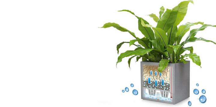 LECHUZA Pflanzgefäße mit Erd-Bewässerung - Deutschland