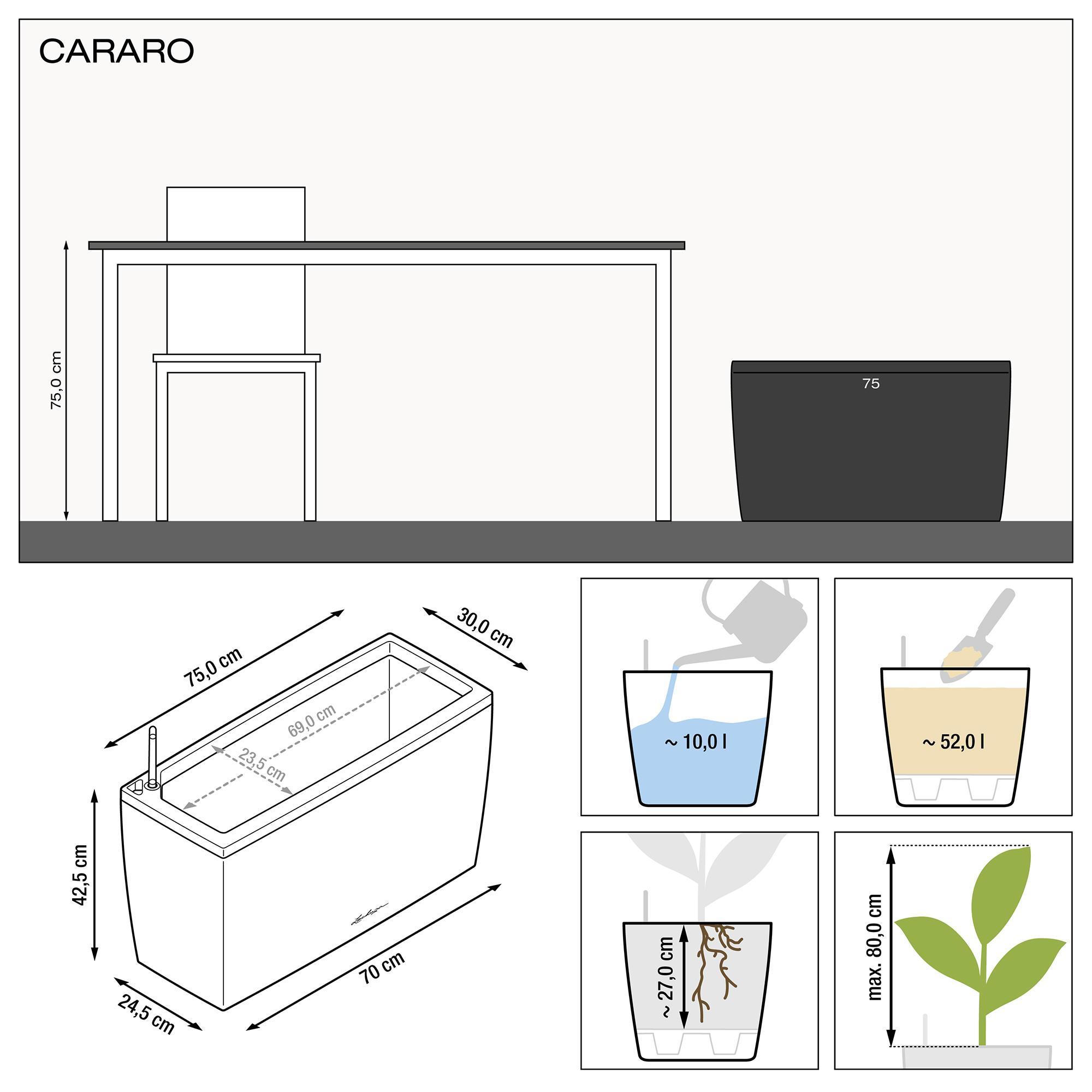 CARARO wit hoogglans - Image 2